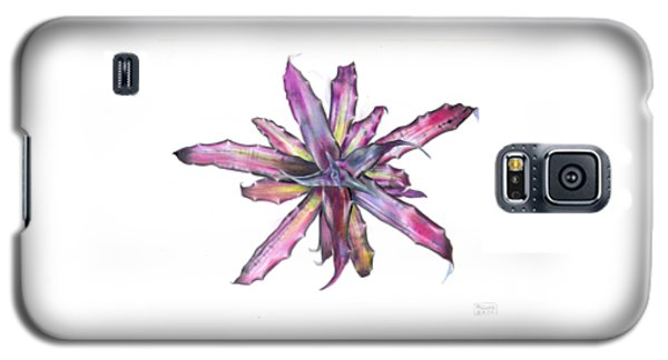 Cryptanthus Tropical Heat Wave Galaxy S5 Case