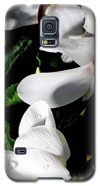 Galaxy S5 Case featuring the photograph Cyclamen by Mindy Newman