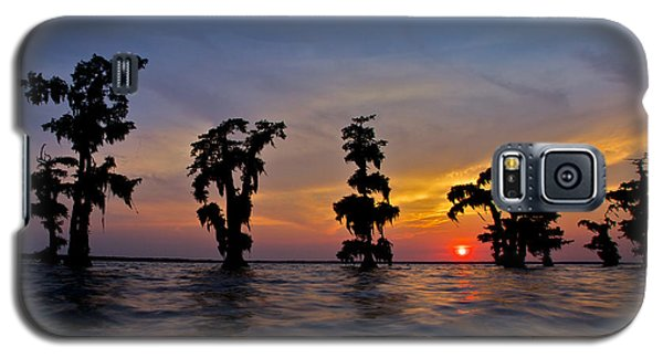Galaxy S5 Case featuring the photograph Cypress Trees by Evgeny Vasenev