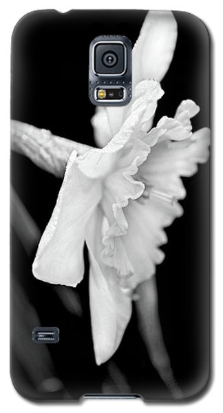 Galaxy S5 Case featuring the photograph Daffodil Flower Black And White by Jennie Marie Schell