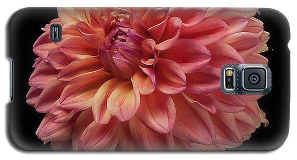 Dahlia 'ferncliff Copper' Galaxy S5 Case