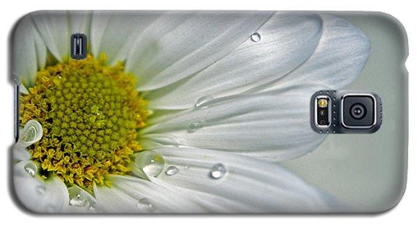 Galaxy S5 Case featuring the photograph Daisy by Elsa Marie Santoro