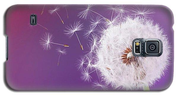 Dandelion Flying On Magenta Background Galaxy S5 Case