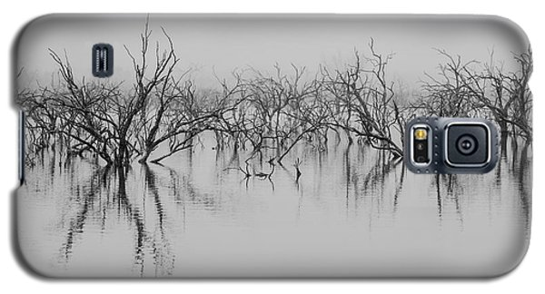 Dead Lake Reflections Galaxy S5 Case