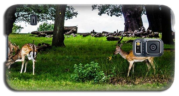 Deer In The Park Galaxy S5 Case