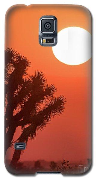 Desert Sunrise Galaxy S5 Case