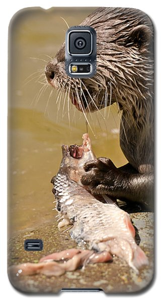 Dinner Time Galaxy S5 Case by Scott Carruthers