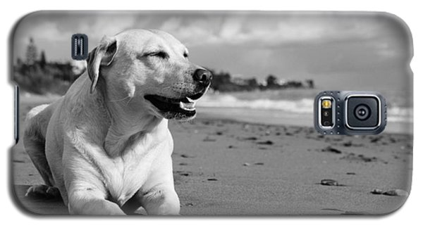 Dog - Monochrome 5  Galaxy S5 Case
