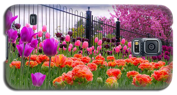 Dreamy Tulip Garden Galaxy S5 Case