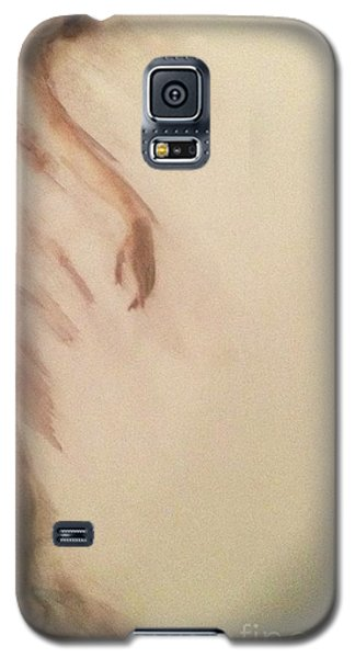 Galaxy S5 Case featuring the painting Dust In The Wind by FeatherStone Studio Julie A Miller