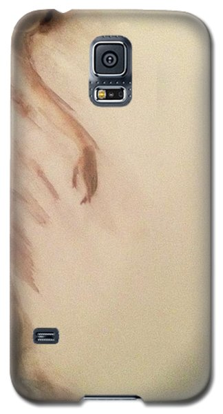 Dust In The Wind Galaxy S5 Case by FeatherStone Studio Julie A Miller