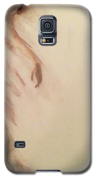 Dust In The Wind Galaxy S5 Case