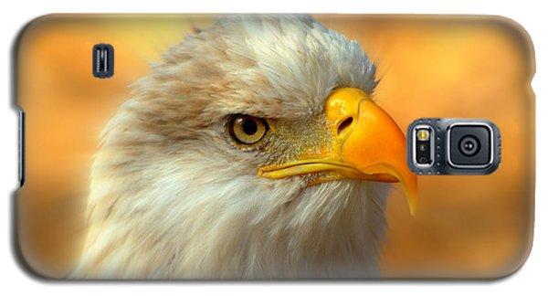 Eagle 10 Galaxy S5 Case