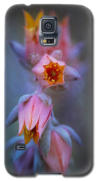 Echeveria Flowers Galaxy S5 Case