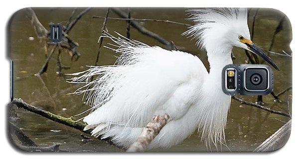 Egret Bath Galaxy S5 Case