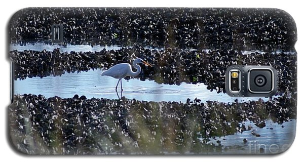 Egret In The Marsh Galaxy S5 Case by Margie Avellino
