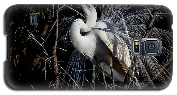 Elegant Egret Galaxy S5 Case by Kelly Marquardt