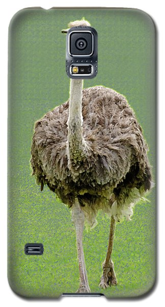 Emu Galaxy S5 Case