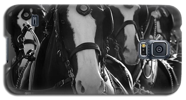 Galaxy S5 Case featuring the photograph Equine Elegance by Wilko Van de Kamp