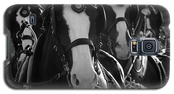 Equine Elegance Galaxy S5 Case by Wilko Van de Kamp