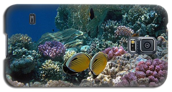 Exquisite Butterflyfish In The Red Sea Galaxy S5 Case
