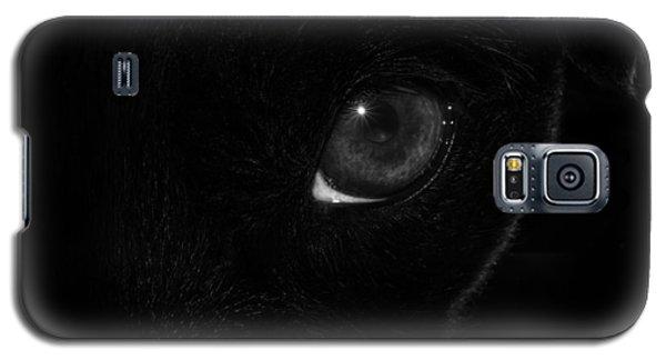 Eye Spy Galaxy S5 Case