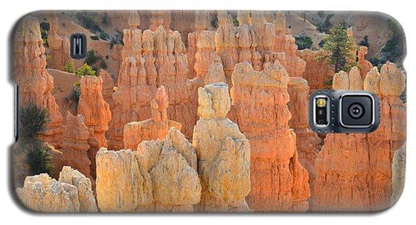 Fairyland Canyon Galaxy S5 Case