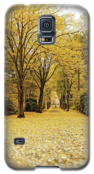 Galaxy S5 Case featuring the photograph Carpet Of Golden Leaves by Ivy Ho