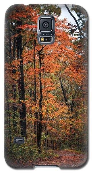 Fall In Arkansas Galaxy S5 Case