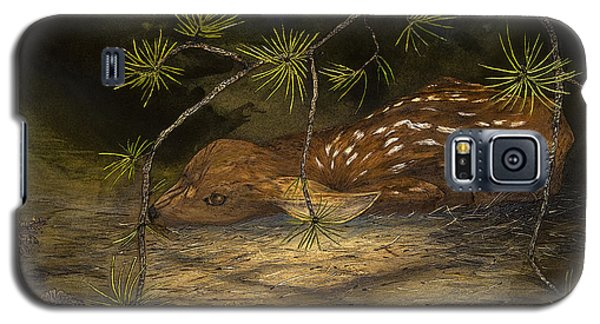 Fawn In Forest Galaxy S5 Case