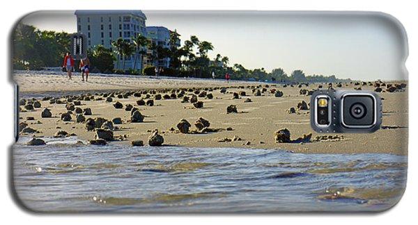Fighting Conchs At Lowdermilk Park Beach In Naples, Fl Galaxy S5 Case