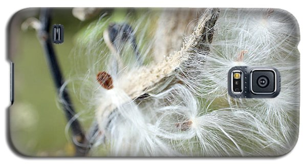 Flight Of The Milkweed Galaxy S5 Case