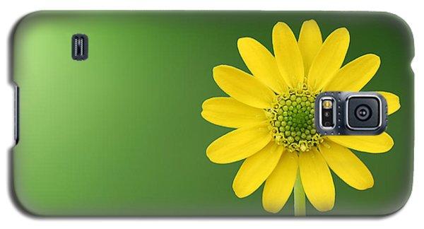 Flower Galaxy S5 Case by Bess Hamiti