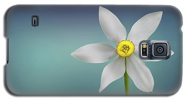 Galaxy S5 Case featuring the photograph Flower Paradise by Bess Hamiti