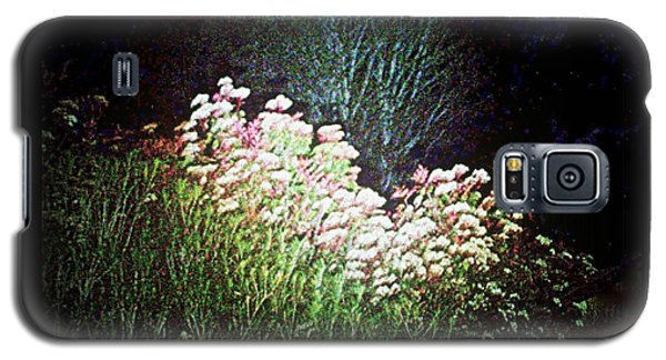 Flowers At Night Galaxy S5 Case