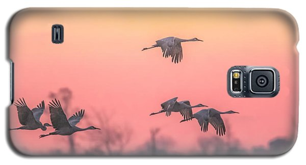 Flying Into The Light And Fog Galaxy S5 Case by Kelly Marquardt