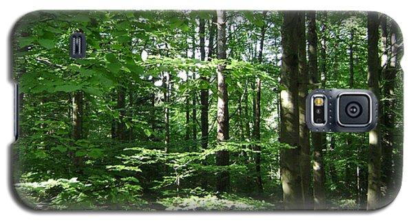 Forest Galaxy S5 Case by Bozena Zajaczkowska