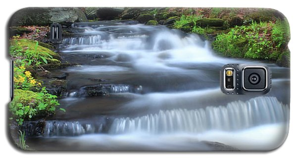 Forest Stream And Marsh Marigolds Galaxy S5 Case by John Burk