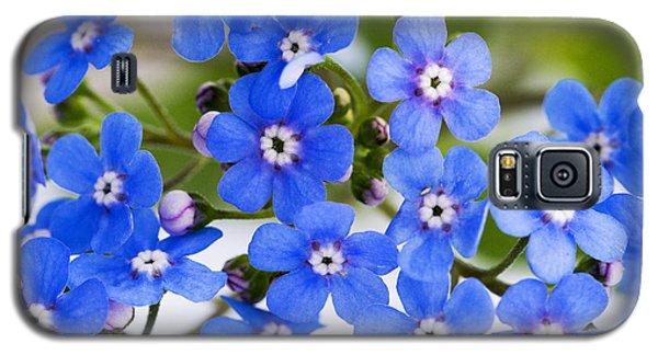 Galaxy S5 Case featuring the photograph Forget-me-not by Chevy Fleet