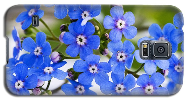 Forget-me-not Galaxy S5 Case