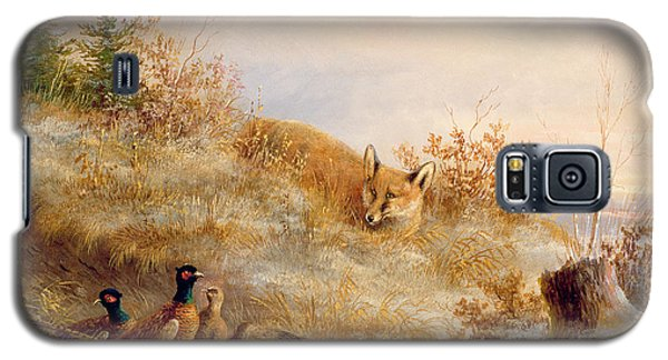 Fox And Pheasants In Winter Galaxy S5 Case by Anonymous
