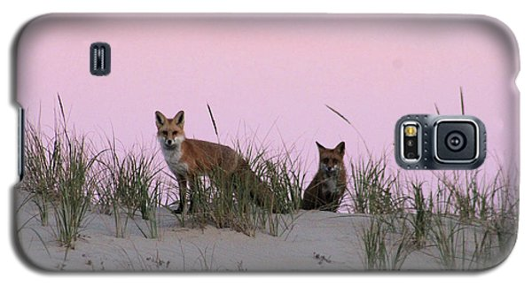 Fox And Vixen Galaxy S5 Case