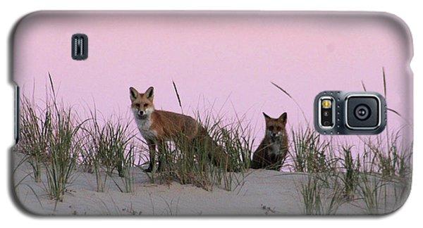 Fox And Vixen Galaxy S5 Case