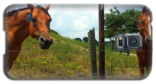 Friendly Stallions Galaxy S5 Case