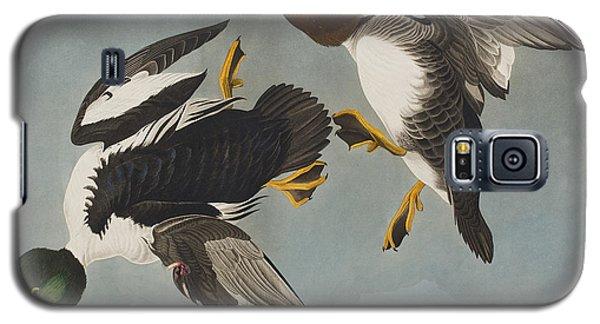 Golden-eye Duck  Galaxy S5 Case by John James Audubon