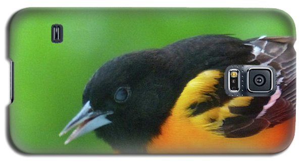 Good Morning Mr. Oriole Galaxy S5 Case