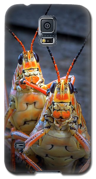 Grasshoppers In Love Galaxy S5 Case by Mark Andrew Thomas