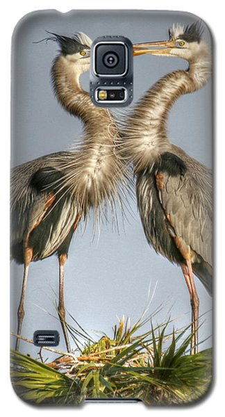 Great Blue Heron Couple Galaxy S5 Case by Myrna Bradshaw