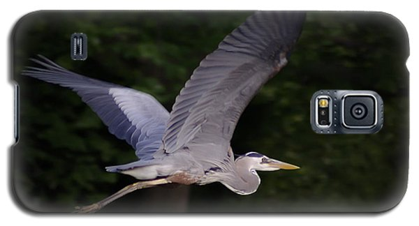 Great Blue Heron In Flight Galaxy S5 Case by Brian Wallace