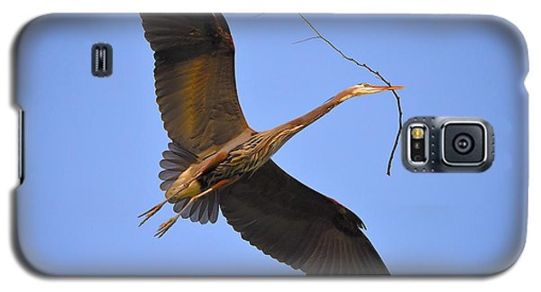 Galaxy S5 Case featuring the photograph Great Blue Heron by Kathy King